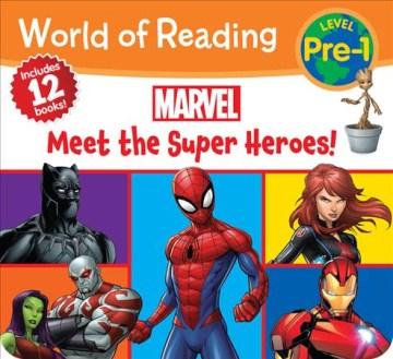 Meet the Super Heroes!