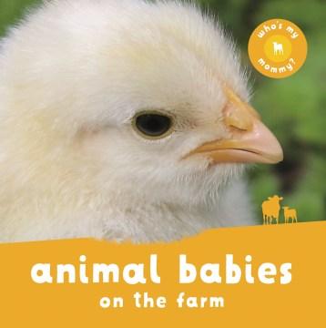 Animal Babies on the Farm