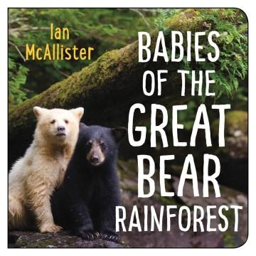 Babies of the Great Bear Rainforest