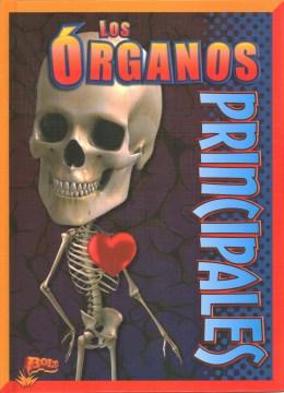 Los órganos principales