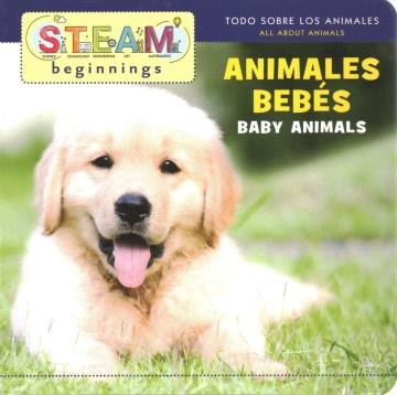 Animales bebés [Spanish version]