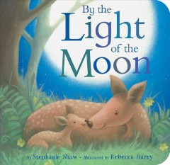 By the Light of the Moon [board Book]