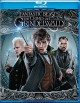 Fantastic beasts. The crimes of Grindelwald [videorecording (Blu-ray)]