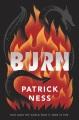 Burn [electronic resource]