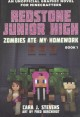 Zombies ate my homework : an unofficial graphic novel for Minecrafters
