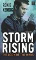 Storm rising [large print]