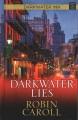 Darkwater lies [large print]