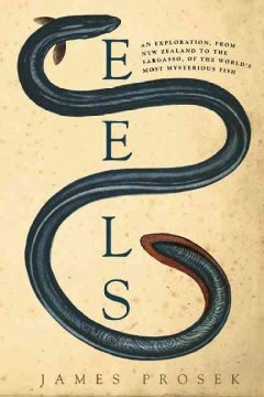 Eels: An Exploration from New Zealand to the Sargasso