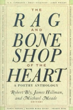 The rag and bone shop of the heart - poems for men