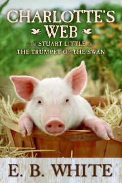 Charlotte's Web, reviewed by: AnAn L.