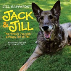 Jack & Jill; the miracle dog with a happy tail to tell