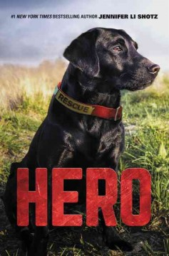 Hero, reviewed by: Ruthanne <br />