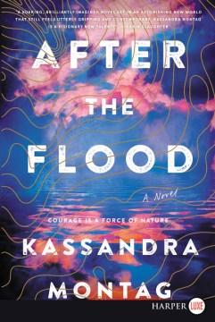 After the flood - a novel