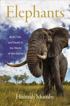 Elephants - birth, life and death in the world of the giants