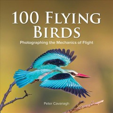 100 Flying Birds - Photographing the Mechanics of Flight