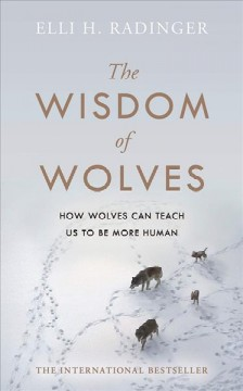 The wisdom of wolves - how they think, plan and look after each other - amazing facts about the animal that is more like man than any other