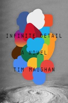 Infinite Detail A Novel