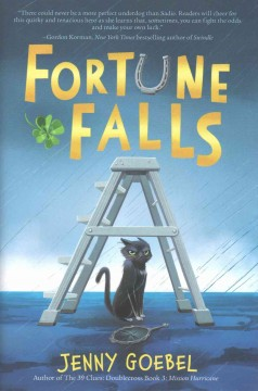Fortune Falls, reviewed by: AnAn L.