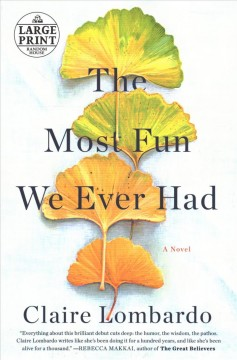 The most fun we ever had - a novel