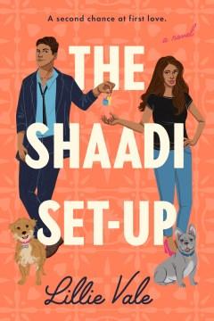The Shaadi set-up - a novel