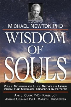 Wisdom of souls - case studies of life between lives from the Michael Newton Institute