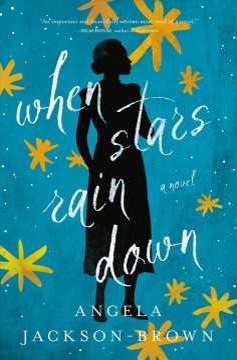 When stars rain down - a novel
