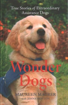Wonder dogs - true stories of extraordinary assistance dogs
