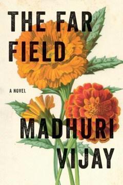 The far field : a novel