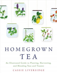Homegrown Tea : An Illustrated Guide to Planting, Harvesting, and Blending Teas and Tisanes
