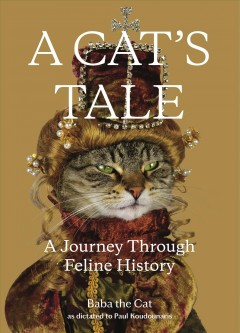 A cat's tale - a journey through feline history