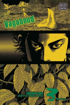 Vagabond. Volume 3