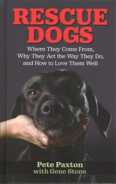 Rescue dogs - where they come from, why they act the way they do, and how to love them well