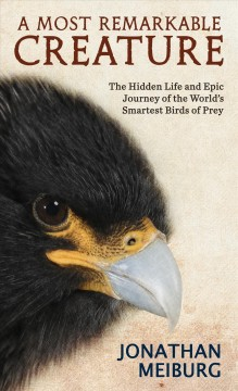 A most remarkable creature - the hidden and epic journey of the world's smartest birds of prey