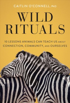 Wild Rituals - 10 Lessons Animals Can Teach Us About Connection, Community, and Ourselves