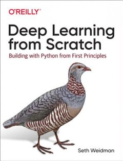 Deep Learning from Scratch - Building With Python from First Principles