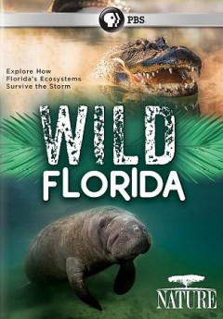 Nature- Wild Florida