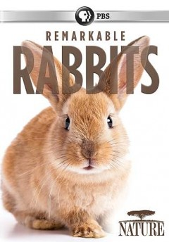 Nature- Remarkable Rabbits