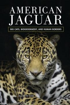 American jaguar - big cats, biogeography, and human borders