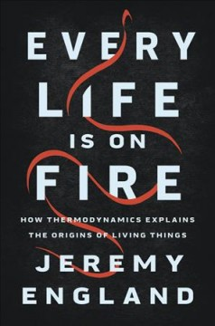 Every life is on fire - how thermodynamics explains the origins of living things