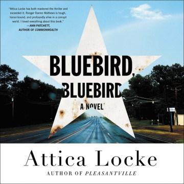 Bluebird, bluebird  - a novel