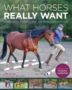 What Horses Really Want - Unlocking the Secrets to Trust, Cooperation and Reliability