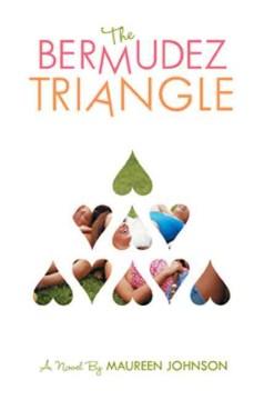 The Bermudez Triangle : a novel