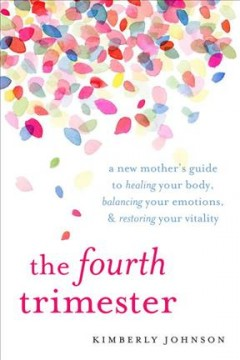 The fourth trimester : a postpartum guide to healing your body, balancing your emotions, and restoring your vitality