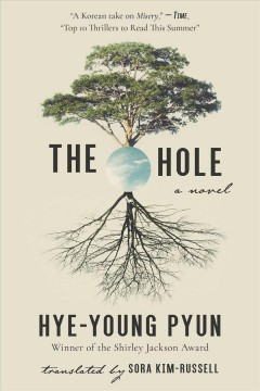 The hole : a novel