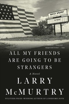 All my friends are going to be strangers : a novel