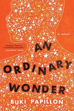 An ordinary wonder - a novel