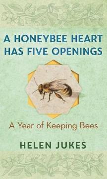 A honeybee heart has five openings - a year of keeping bees