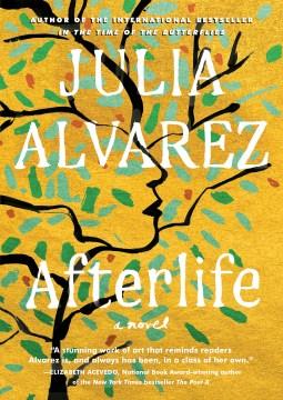 Afterlife - a novel