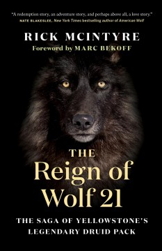 The Reign of Wolf 21 The Saga of Yellowstone's Legendary Druid Pack