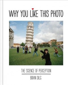 Why You Like This Photo : the Science of Perception